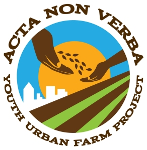 "Acta Non Verba means ""Deeds, not Words"""