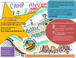 1st Annual Camp ANV Art Contest Flyer (ESP)