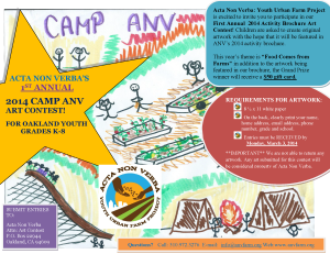 1st Annual Camp ANV Art Contest Flyer