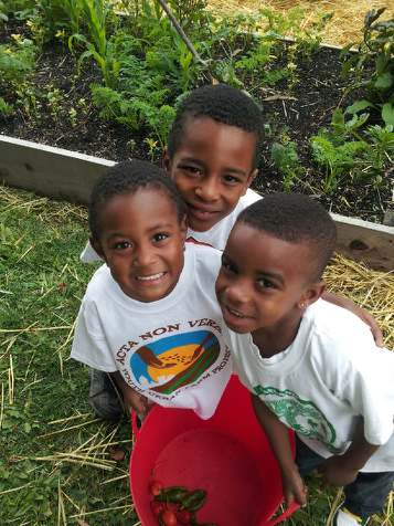 Local children help plan, plant, harvest and sell the organically grown produce!