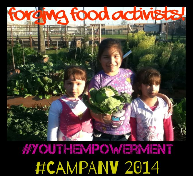 Camp ANV 2014